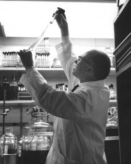 Jonas Salk in lab at the Salk Institute for Biological Studies, 1964